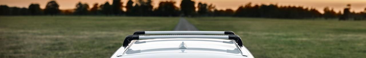 Thule Auto Dachträger